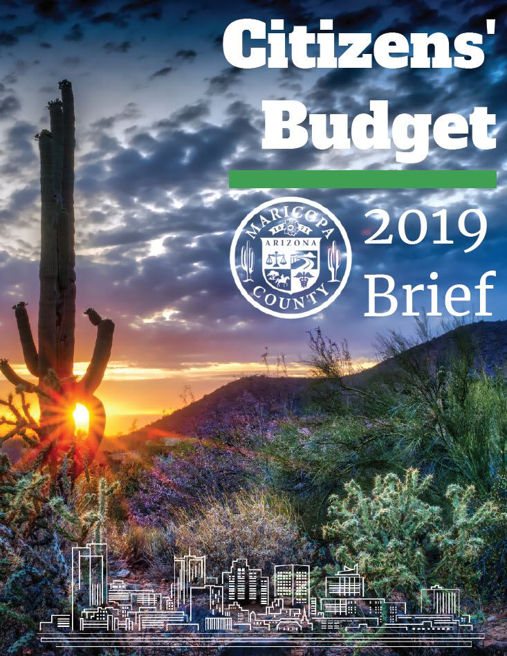 2019 Citizens' Budget Brief